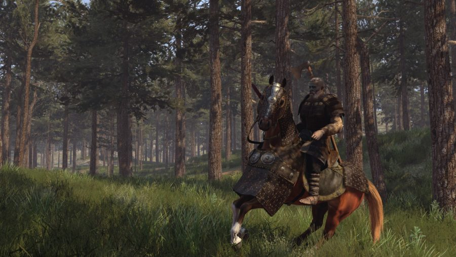 Mount & Blade II Bannerlord horse