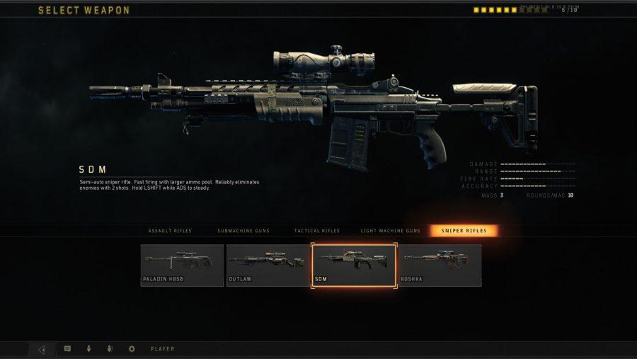 Black Ops 4 weapons - SDM