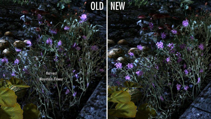 Skyrim mods - HD Plants
