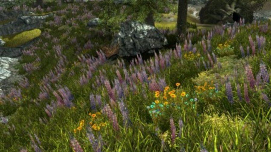 Skyrim mods - Vurt Flora