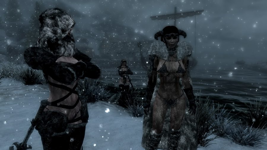 Skyrim mods - Wet and Cold