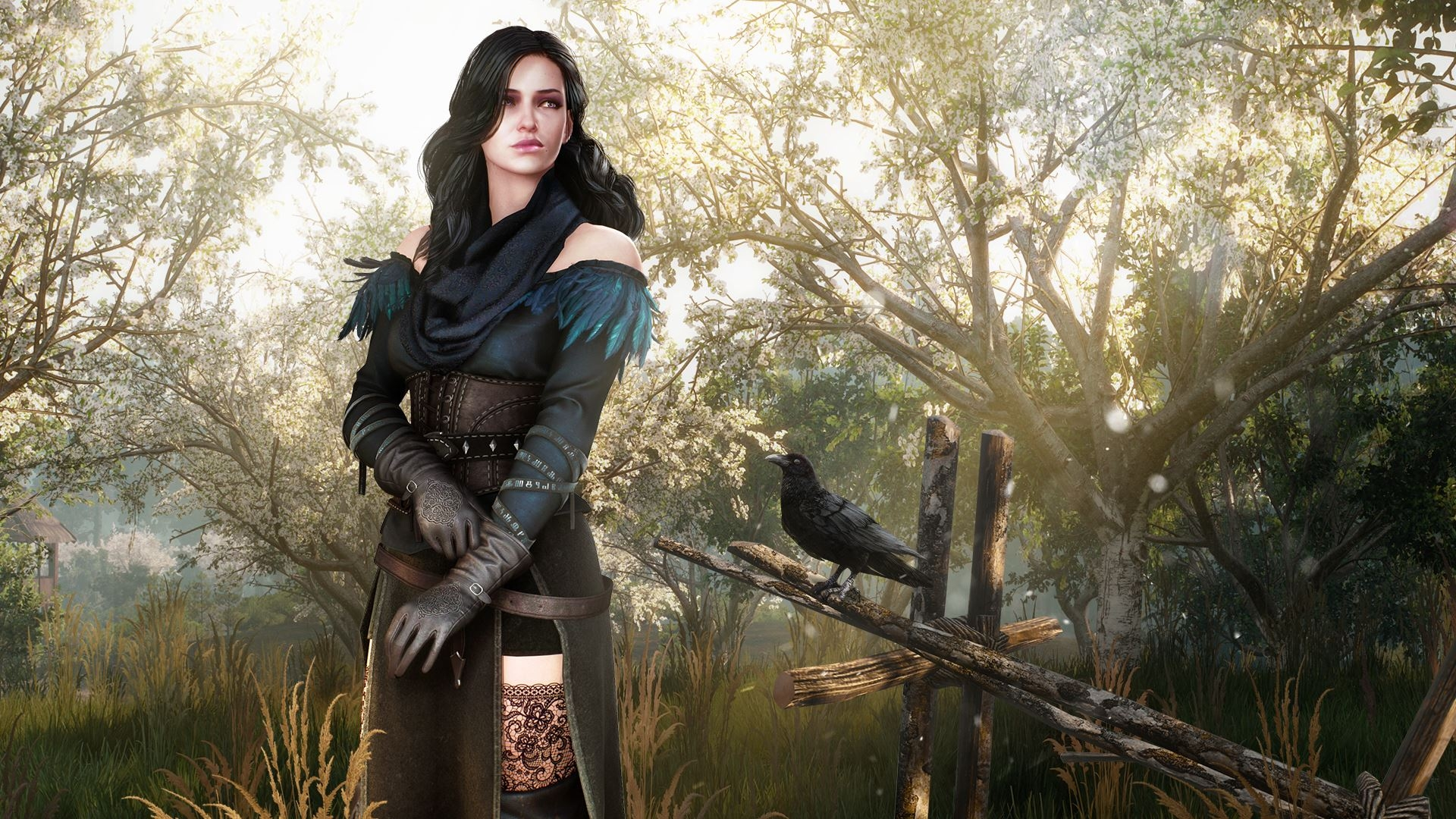 the witcher - photo #35