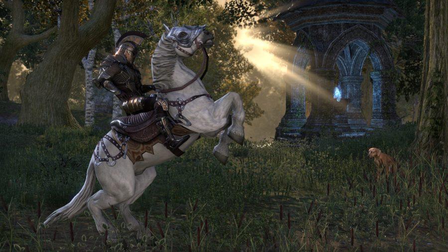 Elder Scrolls 6 news