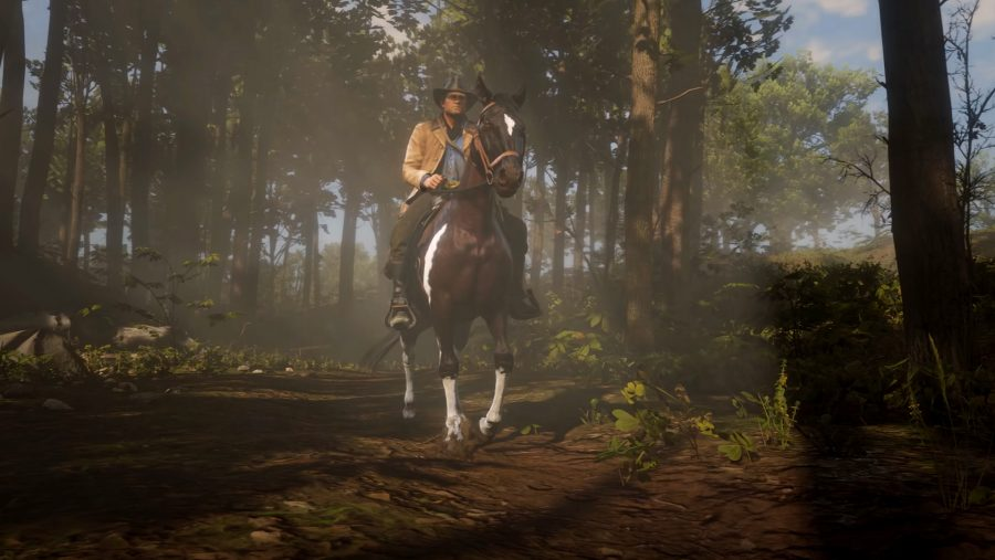 Where is my PC version of Red Dead Redemption 2?!