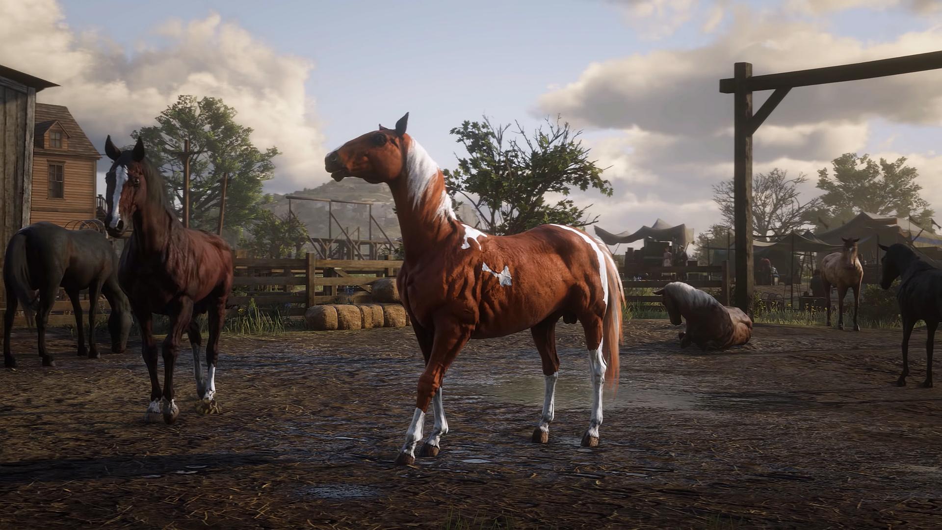 Pferde Red Dead Redemption 2