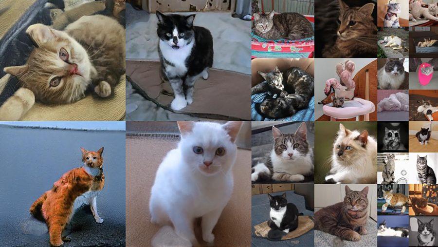 Terrifying cats made by Nvidia