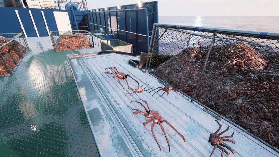 Barents Sea King Crab