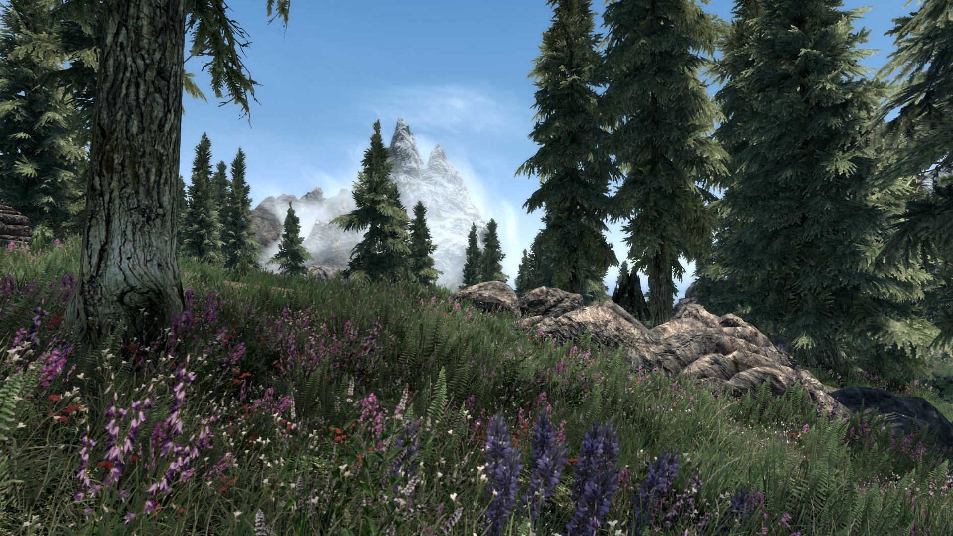 This Skyrim grass mod triples your foliage without torching