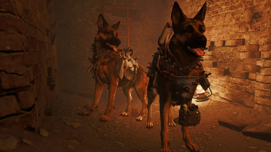 fallout 4 mods be the dog mod