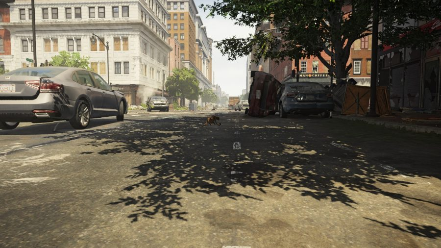 The division 2 fox under tree