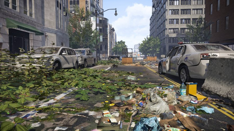 The division 2 racoon