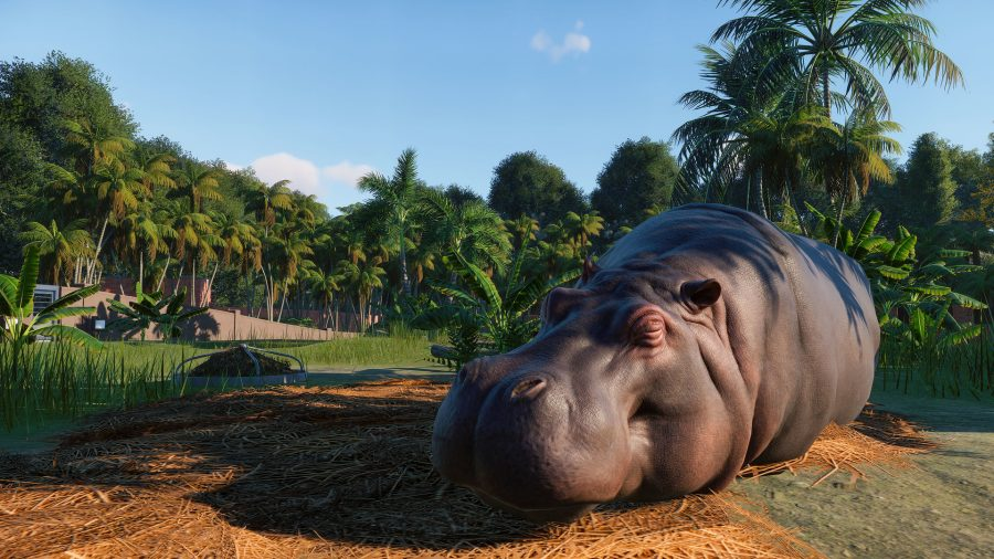 "Planet Zoo's animal animation tools are ""too good for games"" 