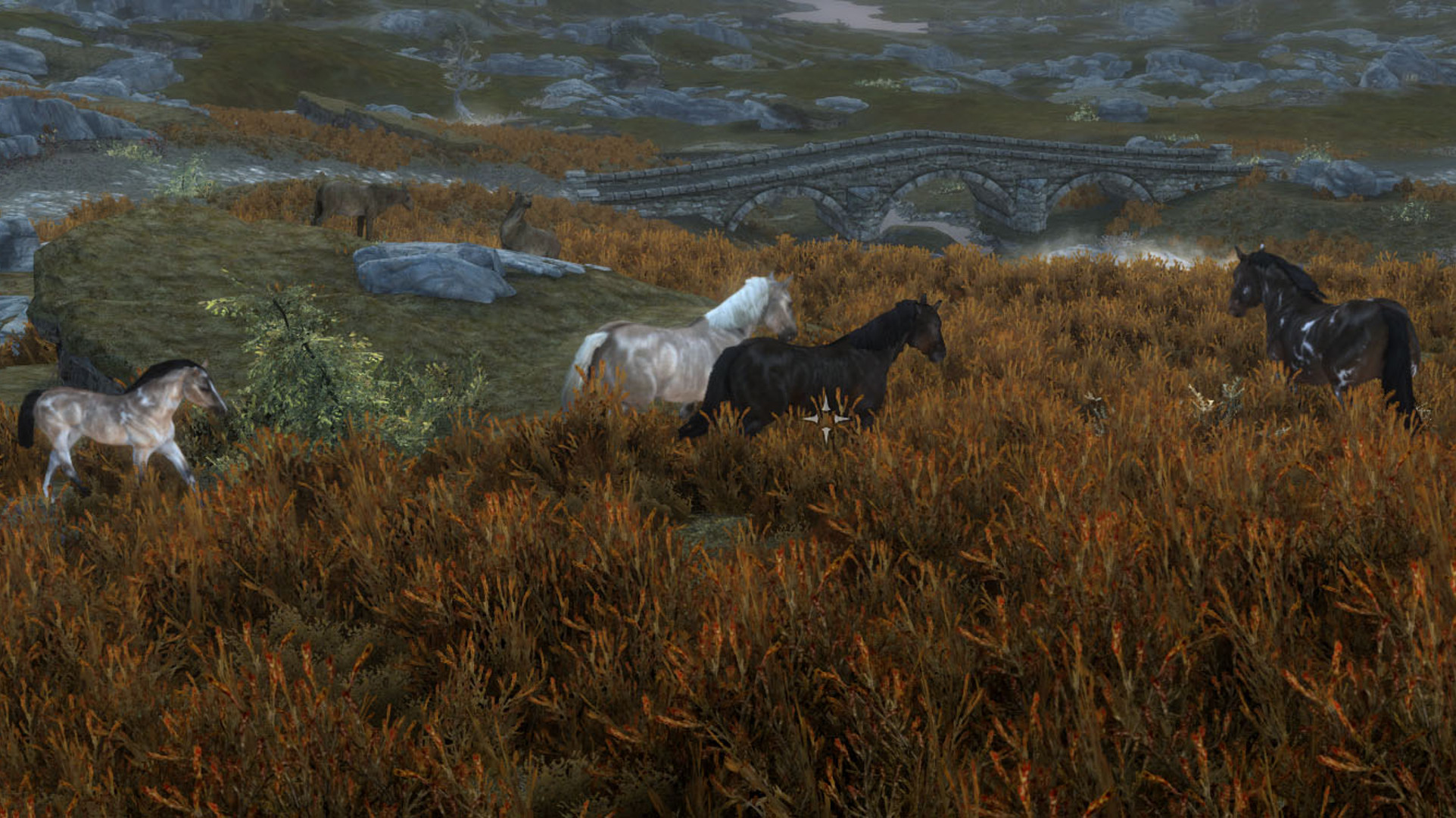 This Skyrim mod adds a ton of new horses, including a ghost stallion