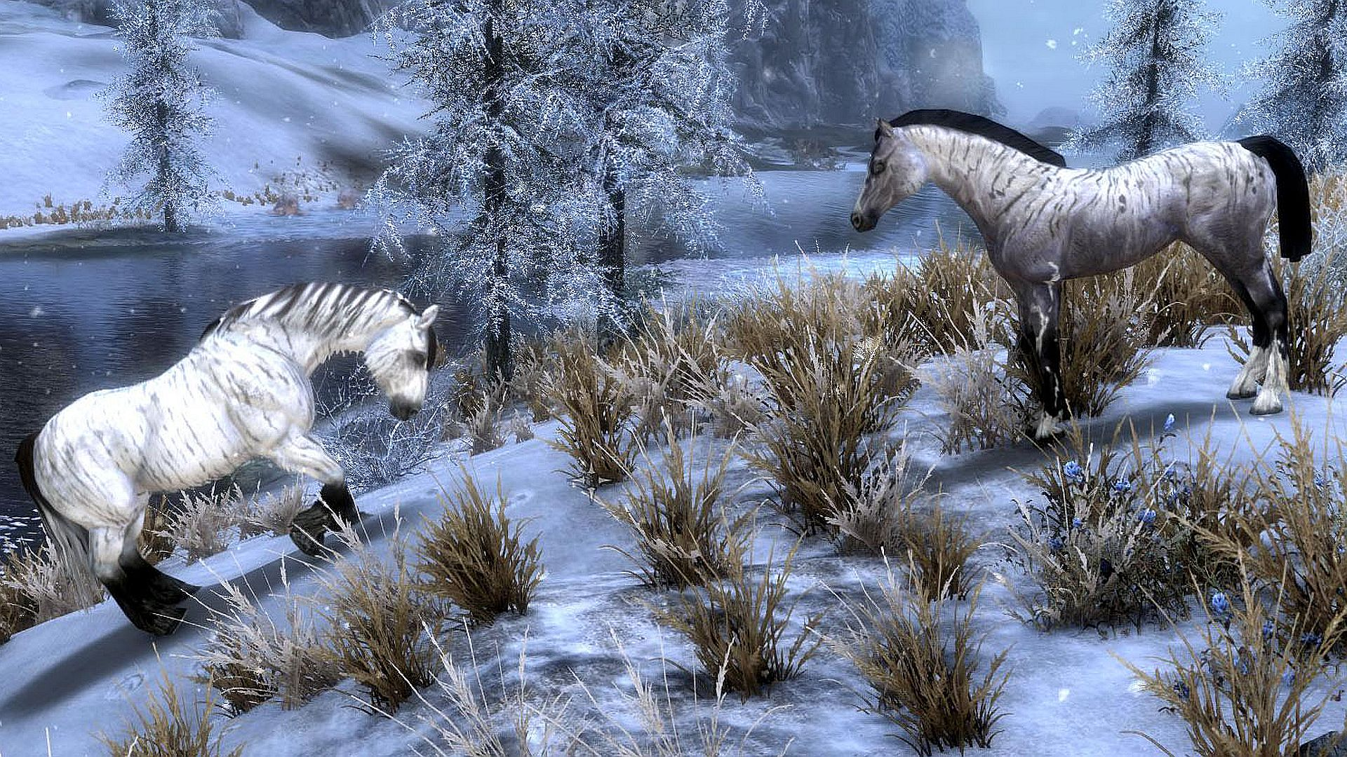 Meet the people making Skyrim mods to improve Tamriel's