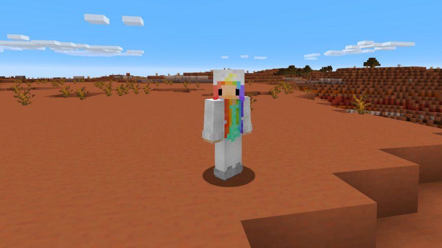Minecraft skins rainbow hoodie