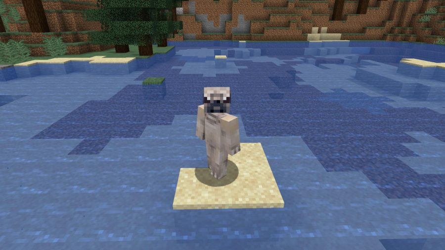Minecraft skins pug