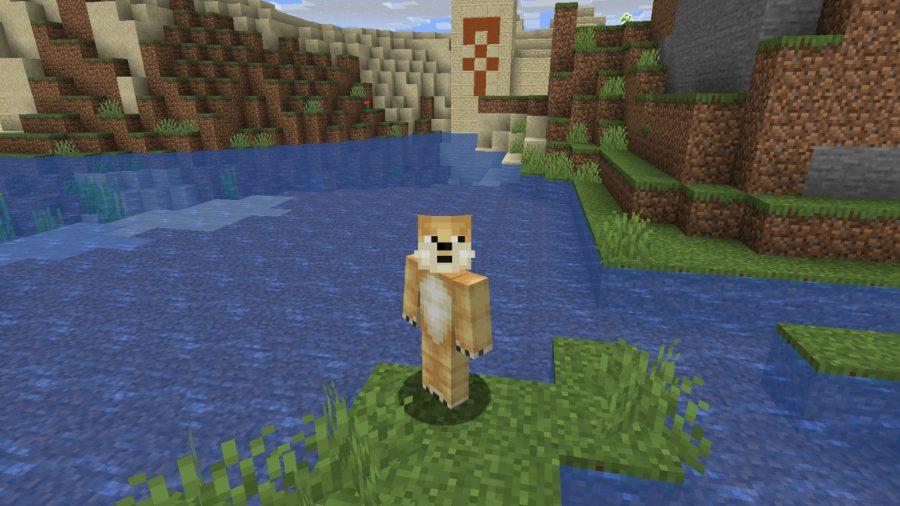 Minecraft skins Doge