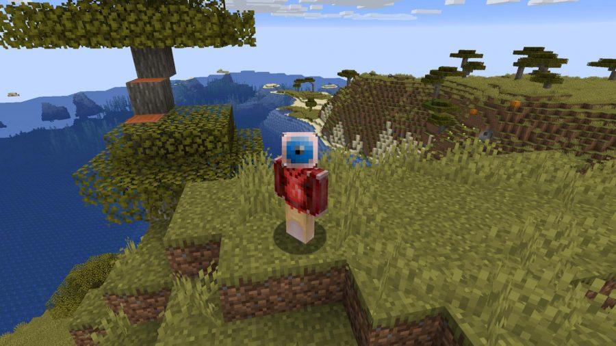 Minecraft skins Transplant