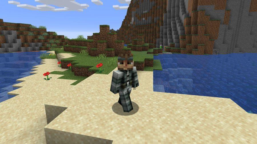 Minecraft skins Solid Snake