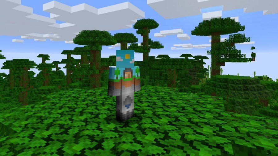Minecraft skins over world