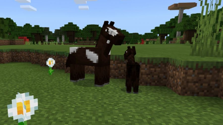 A horse and foal in Minecraft