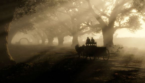 Driving a carriage down a tree-lined road