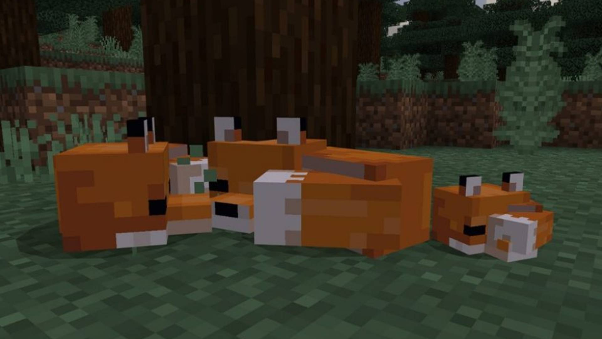 Minecraft fox guide: how to tame a fox in Minecraft