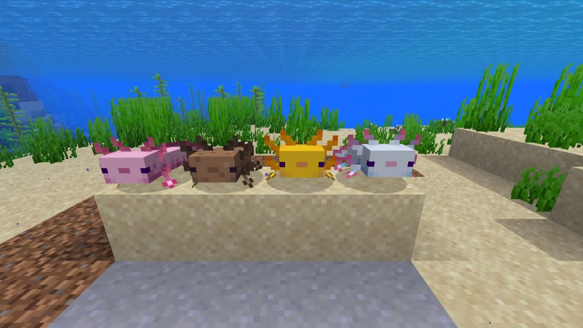 Games Right Now | Minecraft Axolotls