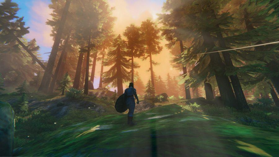 Воин-викинг стоит в лесу;  оранжевый свет проникает сквозь деревья