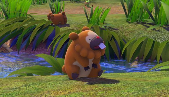 A Bidoof sitting on some grass and looking up to the sky