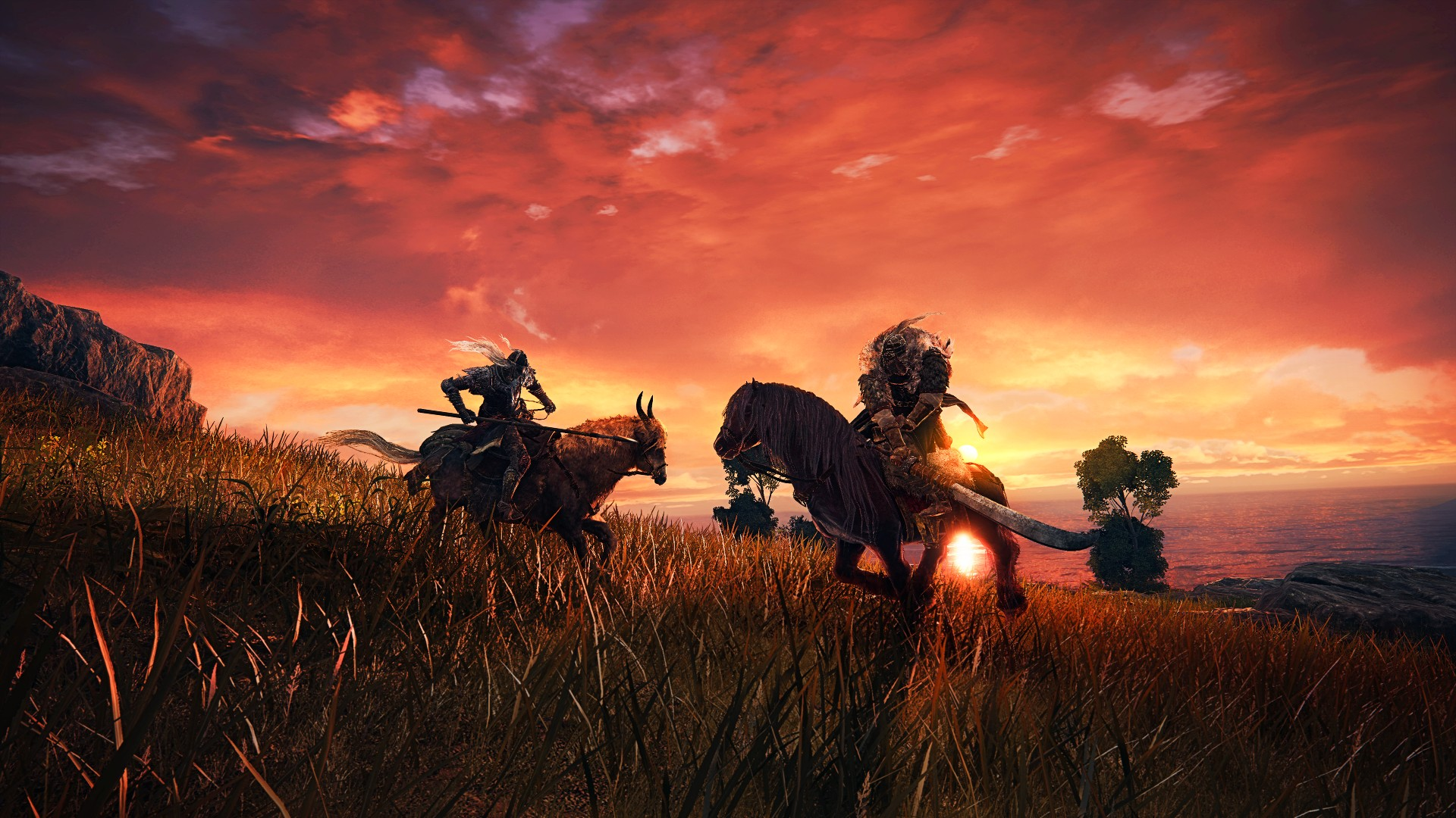 Elden Ring has multiplayer and a dynamic weather system