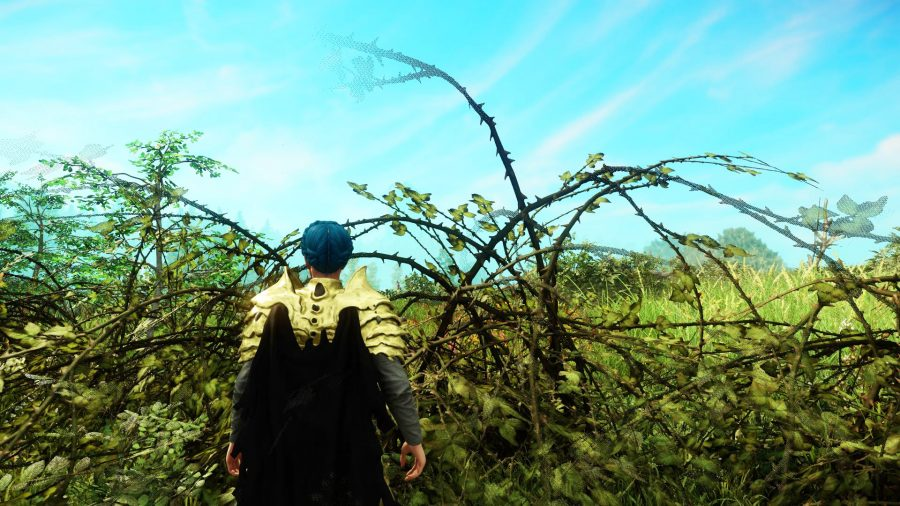 A player standing in front of a briar plant in New World