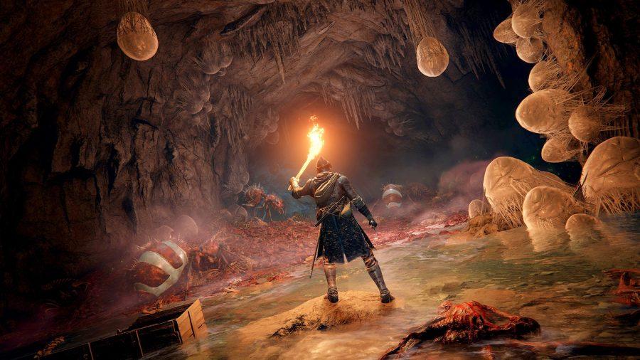 An adventurer raises a torch in a murky cave in Elden Ring