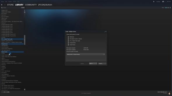 Steam multiple install