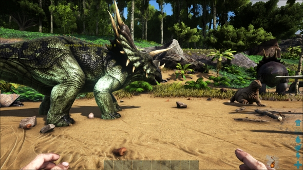 Ark graphics epic