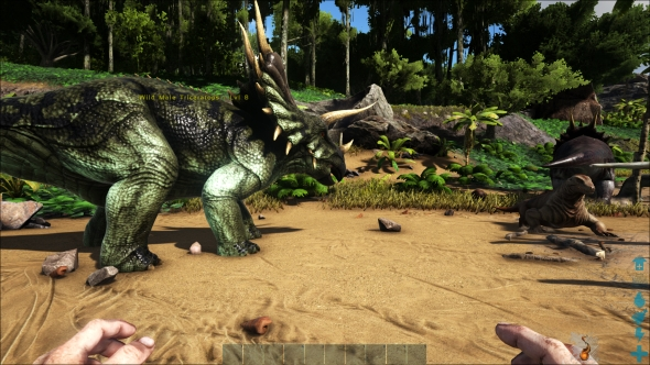 Ark graphics high
