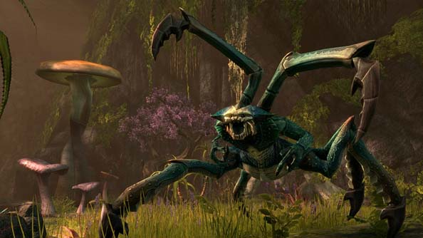 Elder Scrolls Online screenshots reveal game might take place in a fantasy setting