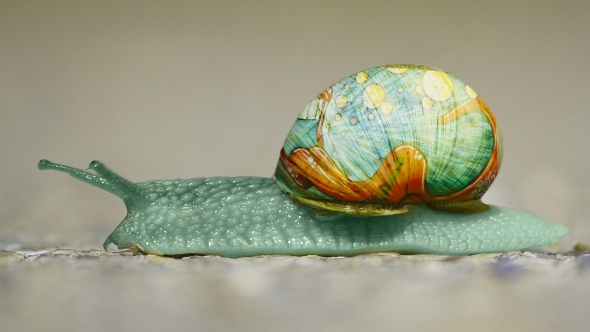 Painting snails...