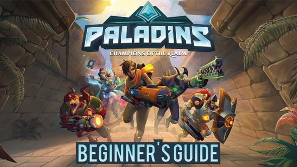 Paladins guide
