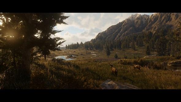 A deer overlooks a verdant valley