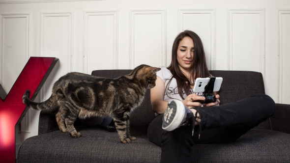 Your Shadow will follow you (and your kitteh) from PC to phone
