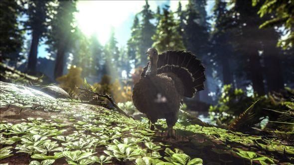 ARK super turkeys