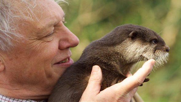 David Attenborough making a documentary for Oculus Rift