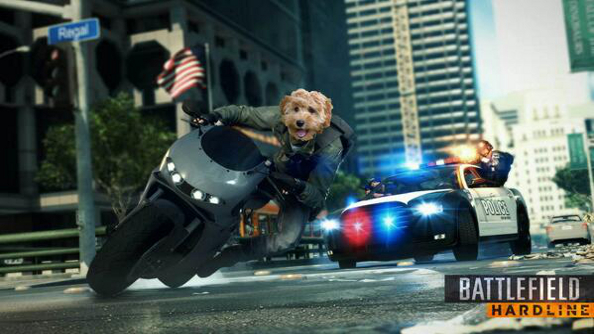 Rooting around in Battlefield: Hardline's trash