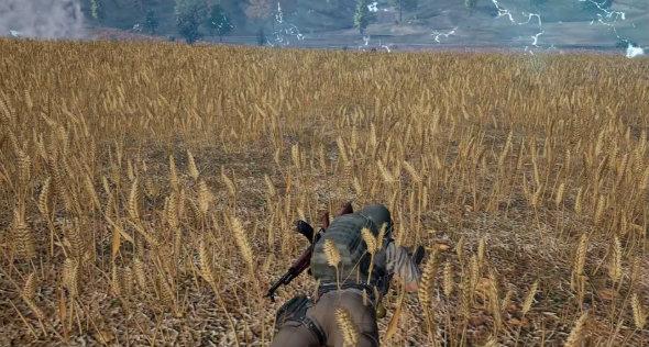 pubg survival