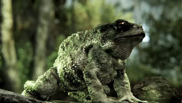 crysis-3-tesselated-toad
