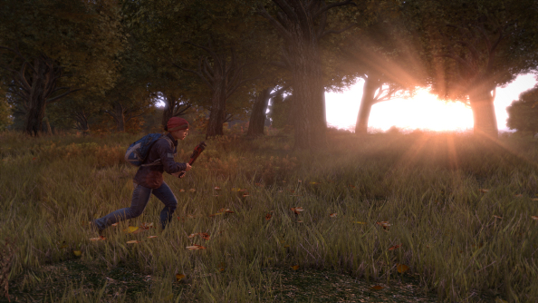 DayZ's 2015 roadmap has been revealed; final version will release in the first half of 2016