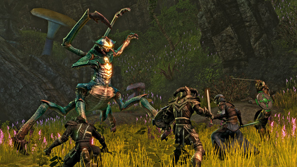"Nords are niche: Elder Scrolls Online is not an MMO for ""everybody who plays games"""
