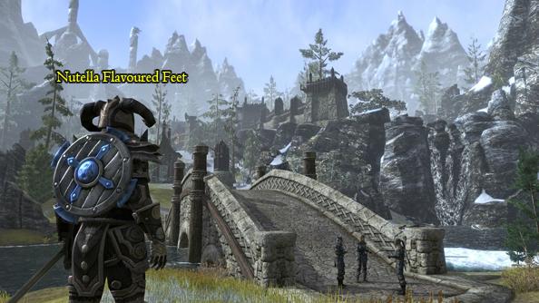 Elder Scrolls Online Bethesda Zenimax