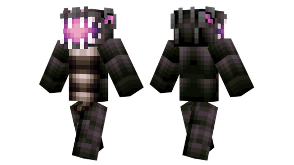 best minecraft skins ender dragon